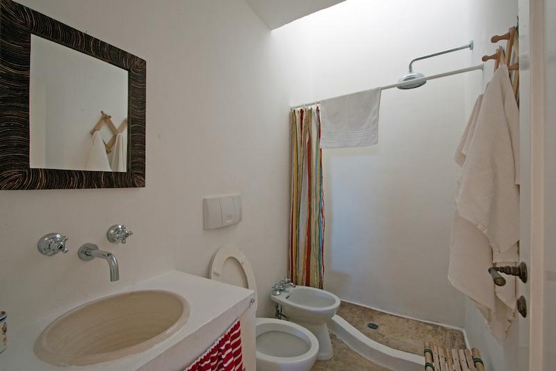 Formiche nella doccia trattamento marmo cucina - Formiche in bagno ...